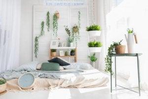 Camera da letto decorata con piante