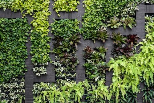 Tipi di muri per abbellire il vostro giardino