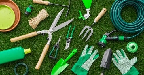 Attrezzi da giardinaggio che non possono mancare in casa