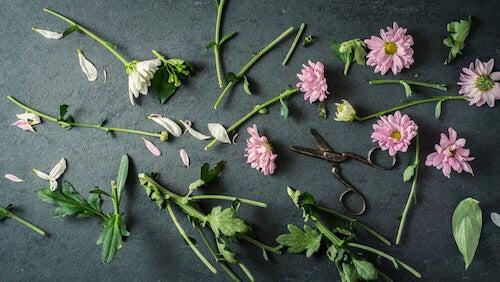 fiori con steli tagliati