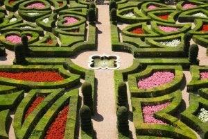 Esempio di giardino alla francese: differenza tra giardino all'italiana o alla francese