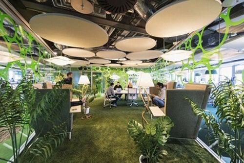 Arredamento di un posto di lavoro con piante