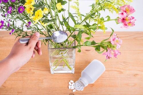 fiori recisi in un vaso con acqua
