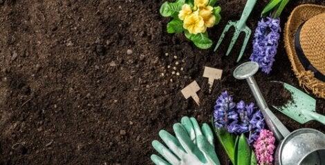 Terra e attrezzi da giardino