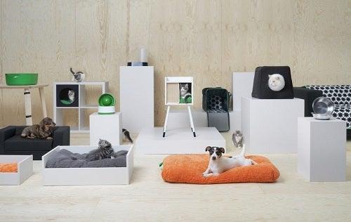 Scoprite la collezione IKEA per gli animali