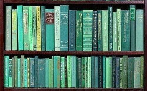 Libreria monocromatica