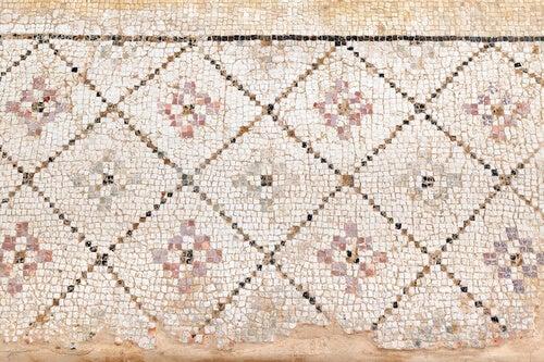 I mosaici coprivano i pavimenti delle case romane