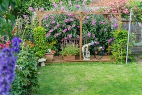 Trame all'interno di un giardino