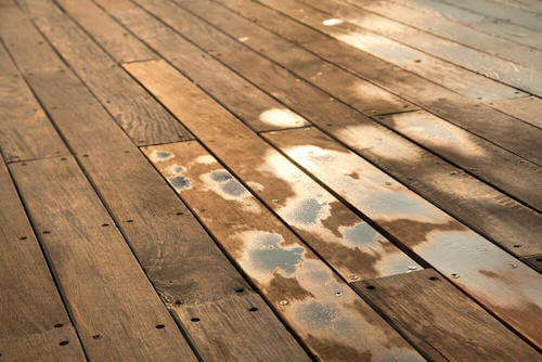 tavole di legno di un pavimento con umidità