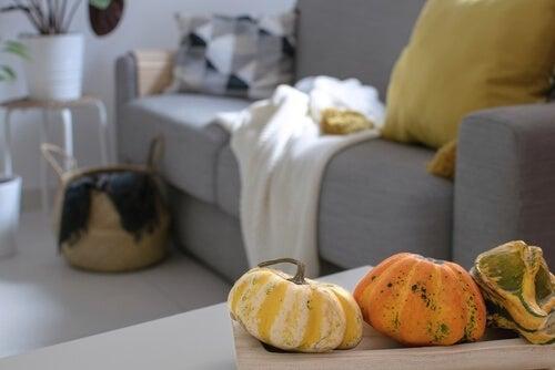 Esempio di decorazione autunnale scandinava. Zucche su un tavolo.