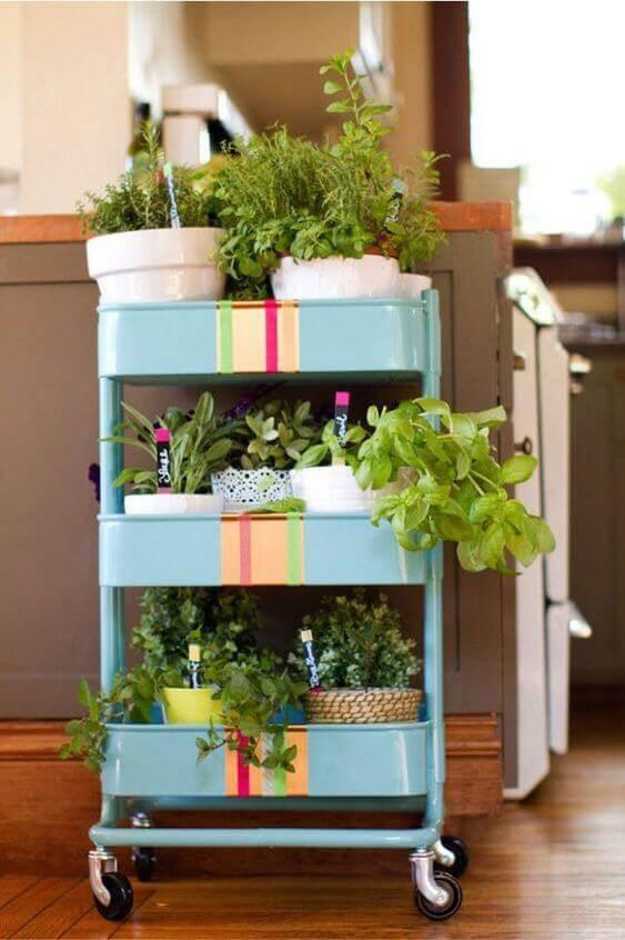 Un carrello per le piante