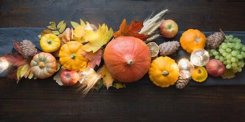 Frutta e verdure secche per la decorazione