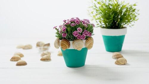 Vasi per fiori decorati con conchiglie.
