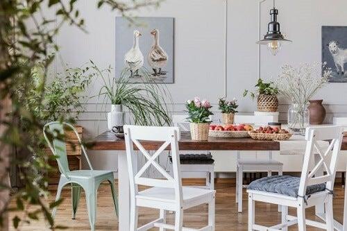 Consigli per organizzare le piante con criterio