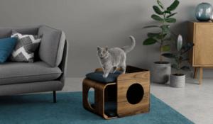 Mobili alla moda per animali domestici in casa