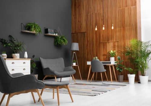 Come decorare con le piante gli interni della casa