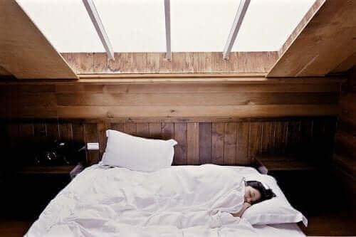Camera da letto in soffitta.