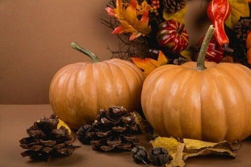 Elementi fondamentali per decorare in autunno
