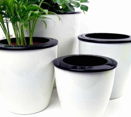 Vasi autoirriganti per piante.