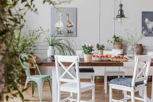 Come creare un ambiente naturale a casa
