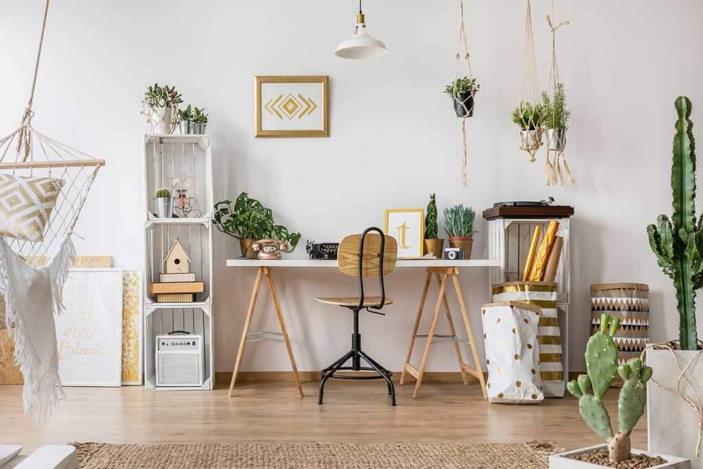 6 piante per mini appartamenti