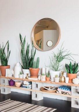 玄関に置きたいおすすめの観葉植物!飾り方のコツは?