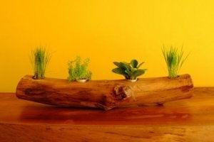 木の幹 植木鉢 作り方