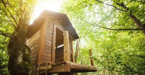 子供のための家づくり:夢のツリーハウス
