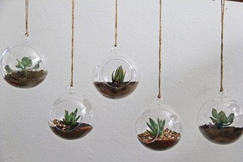 垂直ガーデン