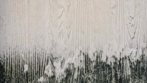 【家具のお手入れ!】木製家具からカビを取り除く方法