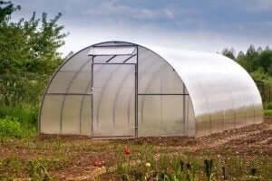 プラスチック製の温室