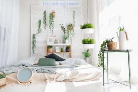 植物 お世話 季節