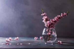 丸い花瓶 花瓶選び