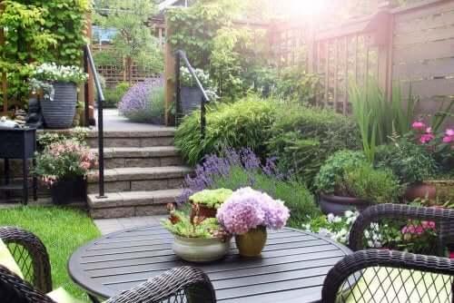 お庭のための植物の選び方と組み合わせ方