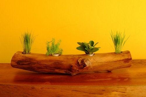 가로로 된 나무 줄기 화분은 여러 식물을 한 번에 심을 수 있다.