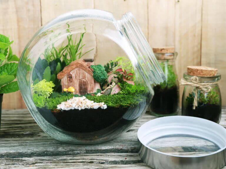 유리병 속 작은 정원: DIY 프로젝트