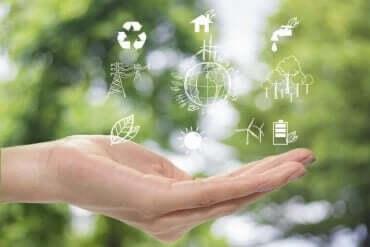 환경을 보호하는 지속 가능 인테리어