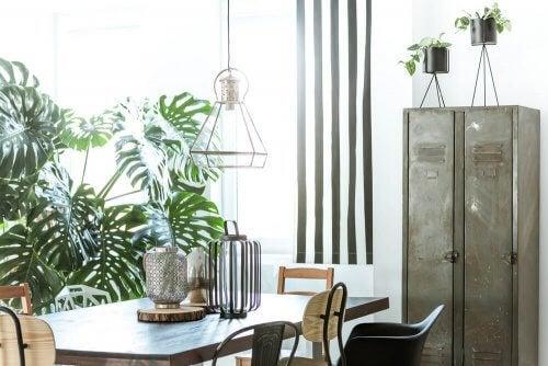 식물은 공기를 깨끗하게 하며 에너지로 가득 채워준다.
