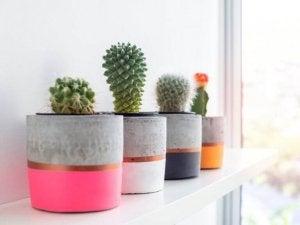 독창적인 콘크리트 파티오 아이디어 및 디자인 6가지 - 화분