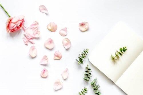 꽃잎으로 장식을 하기 위한 4가지 아이디어