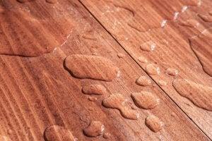단단한 목재로 된 바닥 관리에 대해 알아야 할 모든 것 - 물기