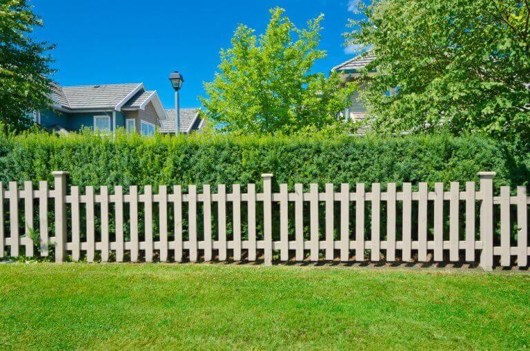 마당이나 정원을 위한 다양한 종류의 울타리