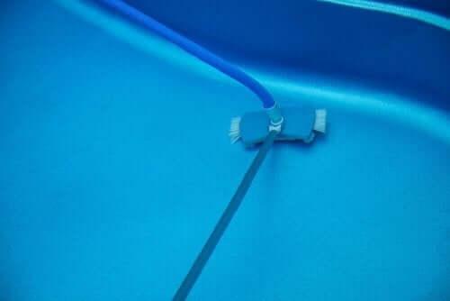 수영장 진공청소기: 어떤 것이 가장 좋은가?