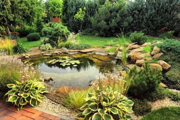 정원 연못: 3가지 타입의 연못들