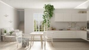 De Scandinavische keuken met plant