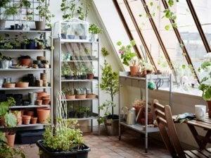 Verschillende soorten verticale tuinen