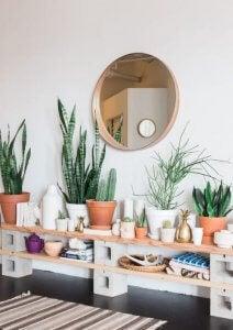boekenkast met baksteen en planten