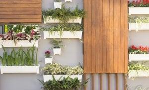 Ga de hoogte in met je planten in een kleine tuin