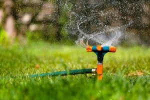Sproeiers zijn zeer handig bij het onderhouden van je grote tuin