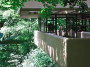 Fallingwater staat bekend als het beste werk in de Amerikaanse architectuur